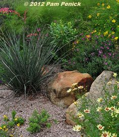 Share Tweet Pin Mail The third garden on this year's Wildflower Center-sponsored Gardens on Tour, at 6400 Zadock Woods Drive in southwest Austin, was ...