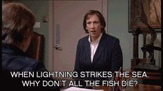 """""""when lighting strikes the sea, why don't all the fish die?"""" Miranda Hart love her! Make Em Laugh, I Love To Laugh, Miranda Tv Show, Miranda Bbc, Miranda Hart Quotes, Miranda Hart Funny, Call The Midwife, British Comedy, Humor"""