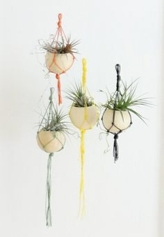 Macrame air plant containers from Eclectic Hang Out - All For Herbs And Plants Macrame Hanging Planter, Hanging Planters, Hanging Out, Container Plants, Plant Containers, Glass Terrarium, Drops Design, Air Plants, Plant Hanger