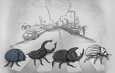 Ilustraciones graciosas de playeras por Alex Solis - Frogx Three