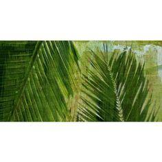 "Palms Triptych Top Giclee 36"" Wide Canvas Wall Art - #N1805 | LampsPlus.com"
