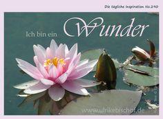 Die tägliche Inspiration No.290  www.inspirationenblog.wordpress.com  www.ulrikebischof.de