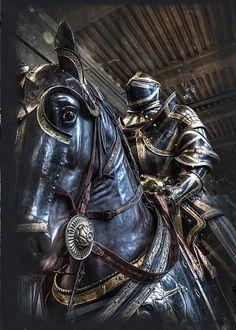 Cavalo de Guerra | War Horse #armadura #armor  #historia #history