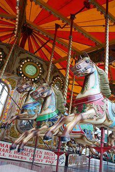 Carousel horses ~