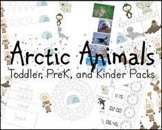 Free! Animal theme, Arctic Animals Toddler, Preschool, and Kindergarten Pack