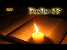 (19) Psalm 37 - Holy Bible (KJV) - YouTube