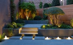 The winning gardens in the Society of Garden Designers' annual competition have been unveiled