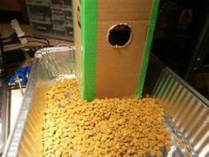 8 DIY Cat Bowls