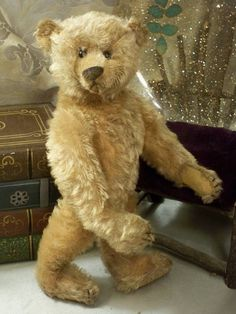 (1905) Steiff Wolfgang. The Bear Necessities Boutique – Grandma's Teddies// What an amazing bear...just look at the expression !!