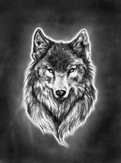 Wolf Head Tattoo Designs | Wolf Head Tattoo Design And Eagle