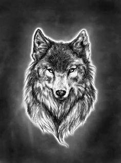 Wolf Head Tattoo Designs | Wolf Head Tattoo Design And Eagle