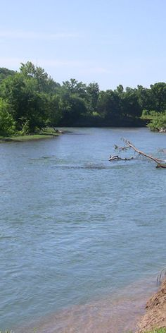 Rent A Canoe And Paddle Up The Illinois River Starved