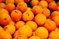 나처럼 상큼한 오렌지들... 오렌지가 좋다. 맛있어서.. 원래 과일을 좋아해서 과일의 가격이 저렴한 나라에 가면 너무 좋았다.    #과일  #펜탁스  #단렌즈  #오렌지  #orange  #pentax  #fruit  #smc  #어륀쥐