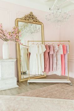 Pink room with gold clothing rack.