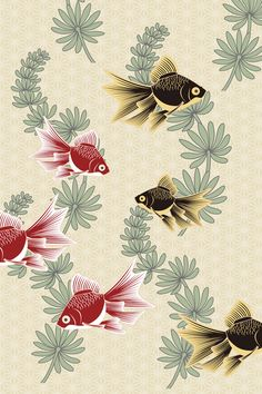 #Japan #Design for #iPhone iPhone壁紙 金魚