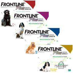 Frontline Plus For Dogs | Flea & Tick Spot On - Buy Online