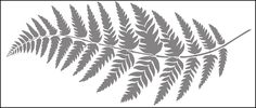 Click to see the actual CO21 - Fern stencil design.