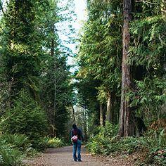 Seattle Park, Seattle, WA