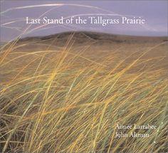 Last Stand of the Tallgrass Prairie by Aimee Larabee