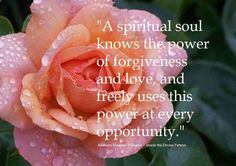 A Spiritual soul knows the power of forgiveness and love, and freely uses this power at every opportunity. Here I Am Lord, Party At The Park, The Power Of Forgiveness, Network World, Rose Quotes, Booker T, Quotable Quotes, Self Help, Twitter Sign Up