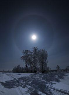 "by Goryachiy Roman, probably in Kola, Russia ... untitled... my title, ""shadowwwWWW"""