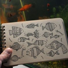 "109 Likes, 3 Comments - Yuliia Bahniuk (@yuliia_bahniuk) on Instagram: ""Day 38 of #The100DayProject Fish. #100DaysOfDrawingThingsInDifferentVariations"""
