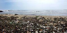"""Überschwemmt der Plastikmüll die Erde? - Haben wir aus """"Plastic Planet"""" nichts gelernt?"""