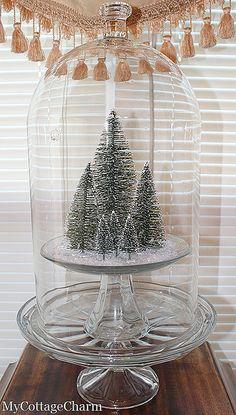 Bottle brush Christmas tree display