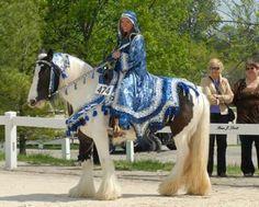 Gypsy vanner horse costume