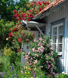 Cottage Garden Design, Nature Hd, Lorax, Swedish House, Farm Gardens, Allotment, Dream Garden, Beautiful Gardens, Aesthetics
