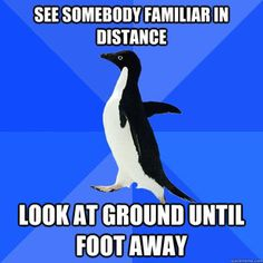 i think ive found the meme that IS me. haha! oh, socially awkward penguin.