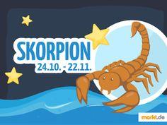 Was Passt Zum Skorpion