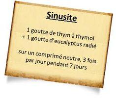 thym-thymol-sinusite.png