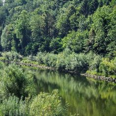 Thur River, Switzerland #thur #river #Switzerland #nature #ríothur…