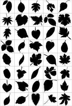80-Leaf-Silhouettes-Free-vector-&-Brush-Pack Vector Brush, Vector Art, Art Deco Borders, Birthday Card Drawing, Leaf Outline, Leaf Silhouette, Mehndi Art Designs, Flower Svg, Leaf Drawing