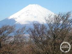 #Fuji