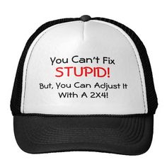 You can't Fix STUPID!, But, you can Adjust it with a 2x4! ... HAT