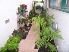 awesome idea for a small side yard Narrow Garden, Alleyway, Yard Design, Pathways, Perennials, Grass, Patio Ideas, Awesome, Outdoor Decor