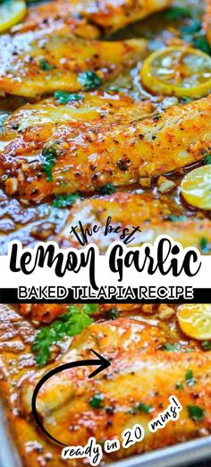 This Spicy Lemon Garlic Baked Tilapia takes all of 5 minute of preparation time before you pop it in the oven. Here is video recipe of how to make it. Lemon Garlic Tilapia Recipe, Baked Tilapia Recipes, Baked Fish, Salmon Recipes, Seafood Recipes, Soup Recipes, Dinner Recipes, Cooking Recipes, Healthy Recipes