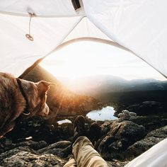 Takeover continued by @shortstache! An experience of a lifetime. Sunrise with my pup, mountains, lakes, mountain goats, you honestly can't beat it. Something about all of these elements playing their part is unreal. This is what life is all about, adventure. Moments like these are what make it all worth it. Shot just with my iPhone 6 in the Mohawk Lakes, CO. #exploretocreate