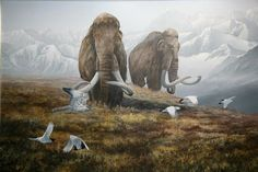 Woolly Mammoths by Randall Compton - Dyreriget Prehistoric Wildlife, Prehistoric World, Prehistoric Creatures, Wildlife Art, Dinosaur Images, Dinosaur Art, Animal Facts For Kids, The Wooly, Extinct Animals
