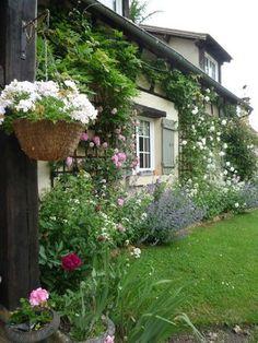 Mon jardin.via Valerie Penty