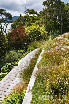 New Zealand 2014 Landscape of The Year in the National Landscaping NZ awards program. Location: Dunedin, New Zealand Designer: Design & Garden Landscapes Ferns Garden, Terrace Garden, Garden Planters, Terrace Ideas, Coastal Gardens, Beach Gardens, Outdoor Gardens, Steep Gardens, Garden News
