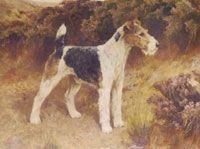 Arthur Wardle Dog Paintings