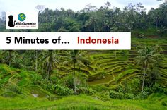 5 Minutes of... Indonesia