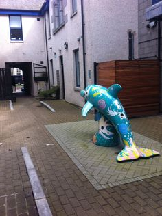 April 2016- St Mary's Court. Home of D-REX.  A dolphin from the 2014 Wild Dolphin Trail public art exhibition in Aberdeen. Artists: Lewis Fraser and Kieren McDonald.