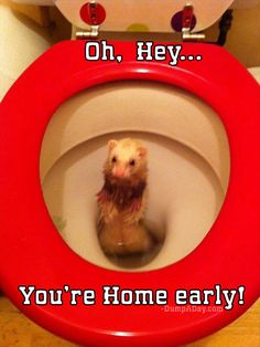 "The Best Of ""You're Home Early"" - 24 Pics"