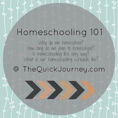 Why We Homeschool {So, you are saying that public school isnt good enough?}