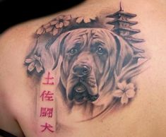 The Japanese fighting dog,Tosa Inu, tattoo, another amazing piece.