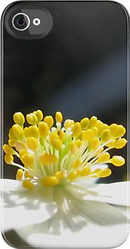 """Anemone""  photography – digital manipulation – use only my own photos in my work! ©Gréta Thórsdóttir"